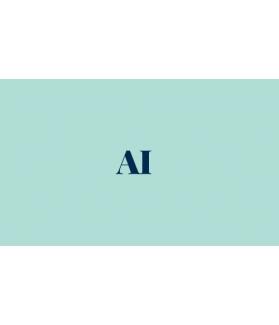 AI - Test d'appariement d'images
