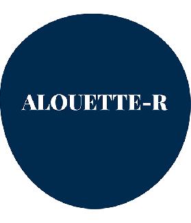 ALOUETTE-R - Test d'analyse de la lecture et de la dyslexie