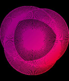 APM Version Abrégée - Progressive Matrice de Raven