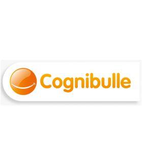 COGNIBULLE - Ateliers de remédiation cognitive en ligne