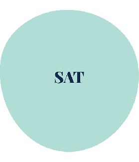 SAT - Test d'Aperception pour personnes âgées
