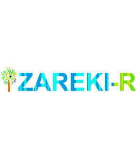 ZAREKI-R - Batterie pour l'évaluation du traitement des nombres et du calcul chez l'enfant